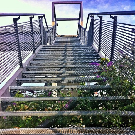 Bridge - Stairs