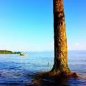 High Tide - Lakeside