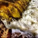 Looking Creek