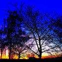 Sunset Blue on a Hill