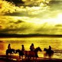Four Ponys at the Lake