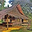 Bamboo Hut on my Morning Walk