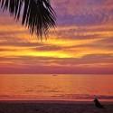Pure Paradiese - Sunset in Eden