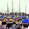Marina reflections I