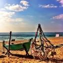 Soon, soon .. Beach Christmas to come :)
