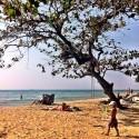Beachwalk I