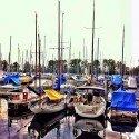 Marina reflections I